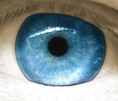 Miracle Eye