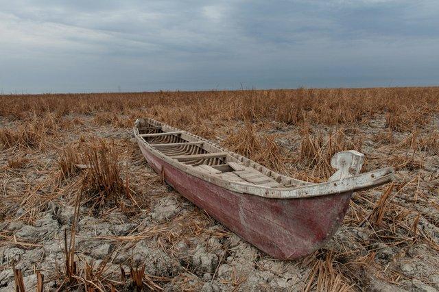 Iraq marsh