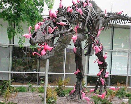 dinosaur-flamingo-450x356.jpg