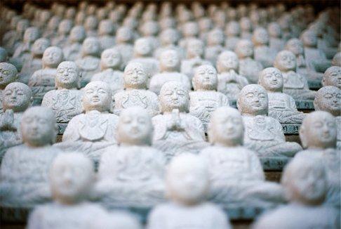 Multiple Buddhas