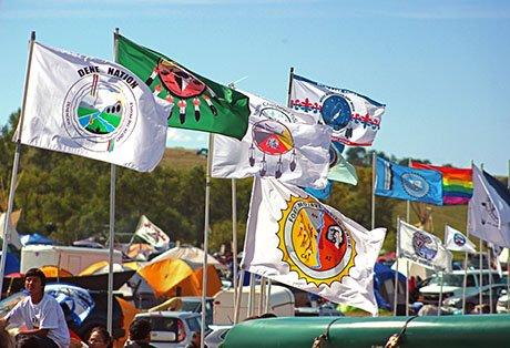 DAPL_Flags1.jpg