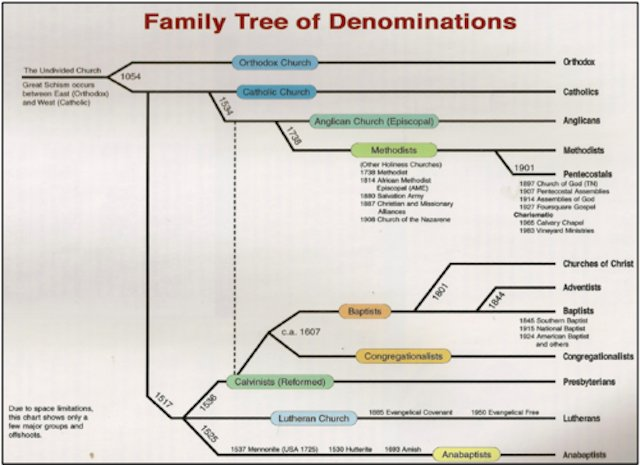 Image result for family tree of denominations
