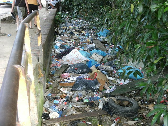 Litter in Paramaribo