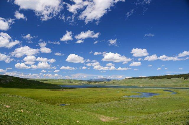 Hayden Valley