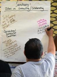 Sanctuary Training Boards