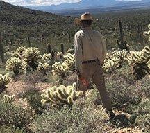 Burklo Desert