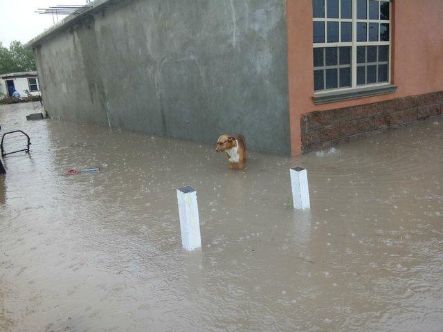 Rio Texas Flooding
