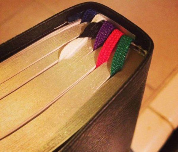Bible bound