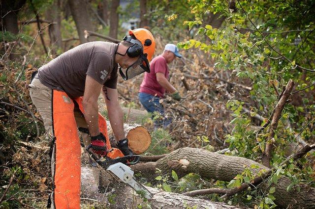 Iowa chainsaw
