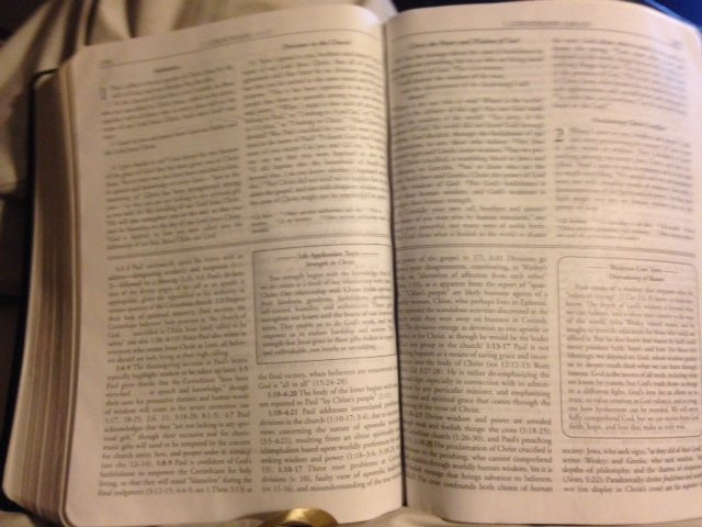 Holy Bible pages