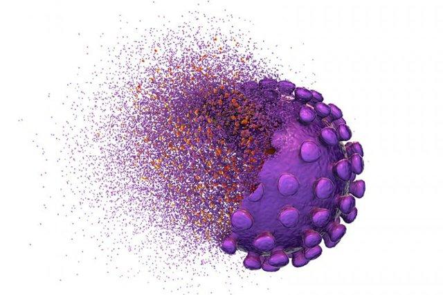 Purple COVID 19