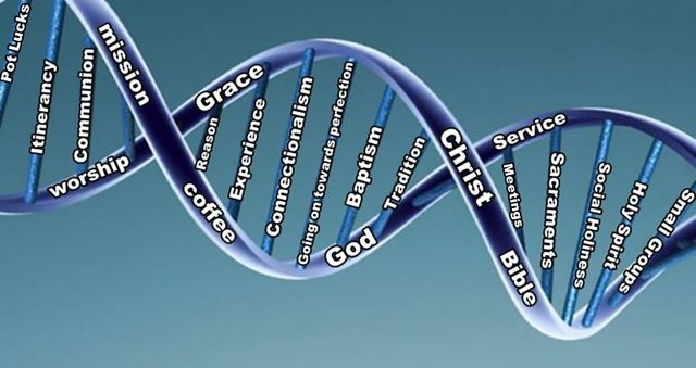 Methodist DNA