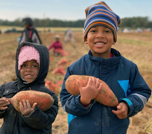 Food insecurity December 2020