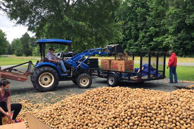 3-food-security-bj-copeland-potatoes-690px.jpg