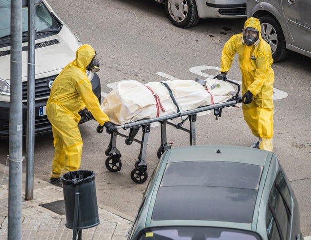 covid deaths teaser